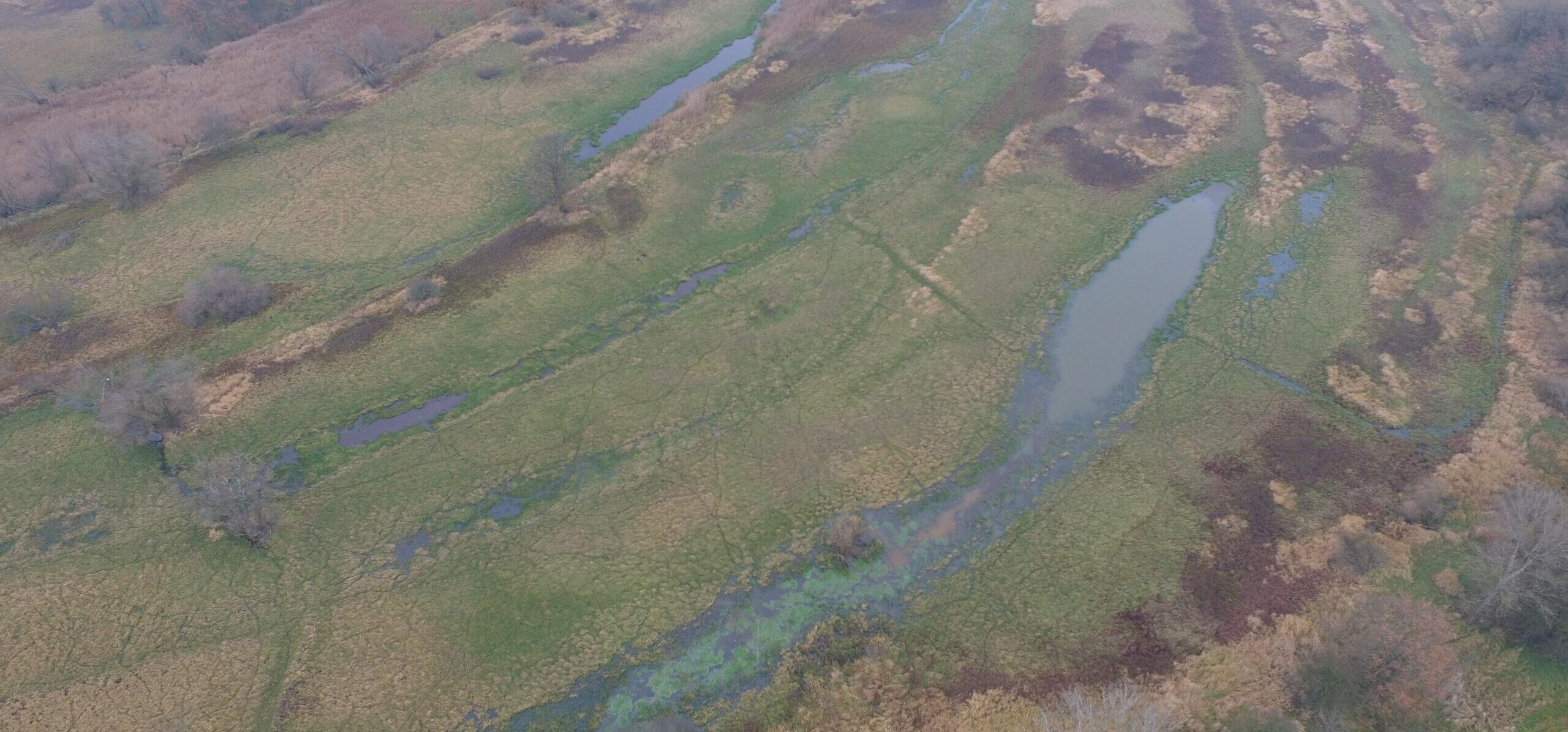 Na Szlaku Odry w Krainie Łęgów Odrzańskich- Użytek Ekologiczny