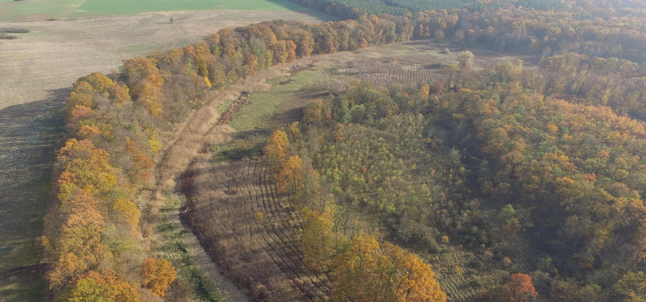 Rezerwat Odrzyska na Szlaku Odry