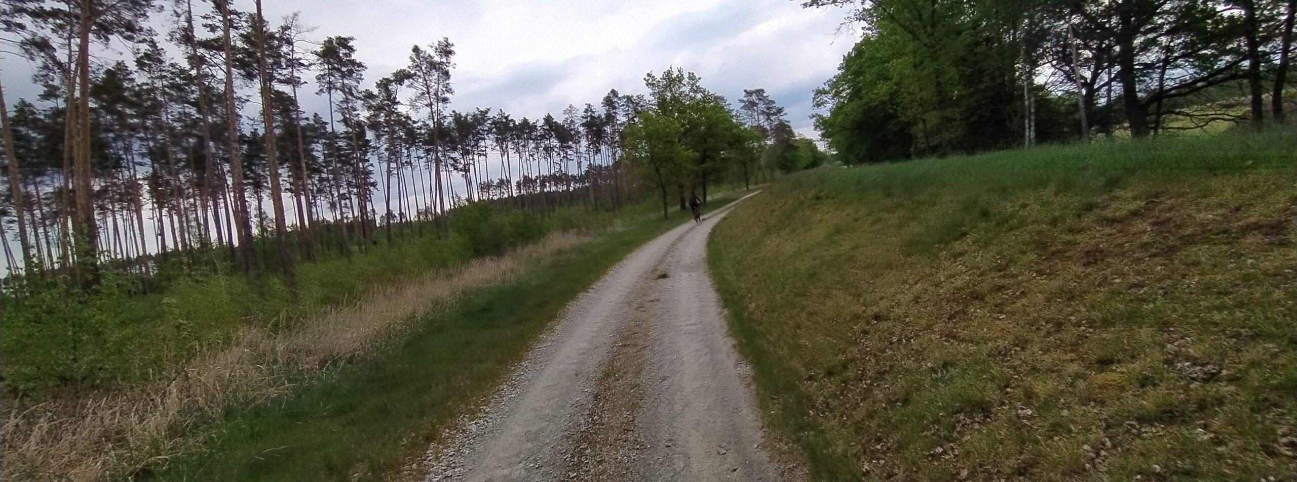 Ścieżki szutrowe - rowerowym szlakiem Odry
